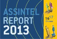 Assintel Report 2013